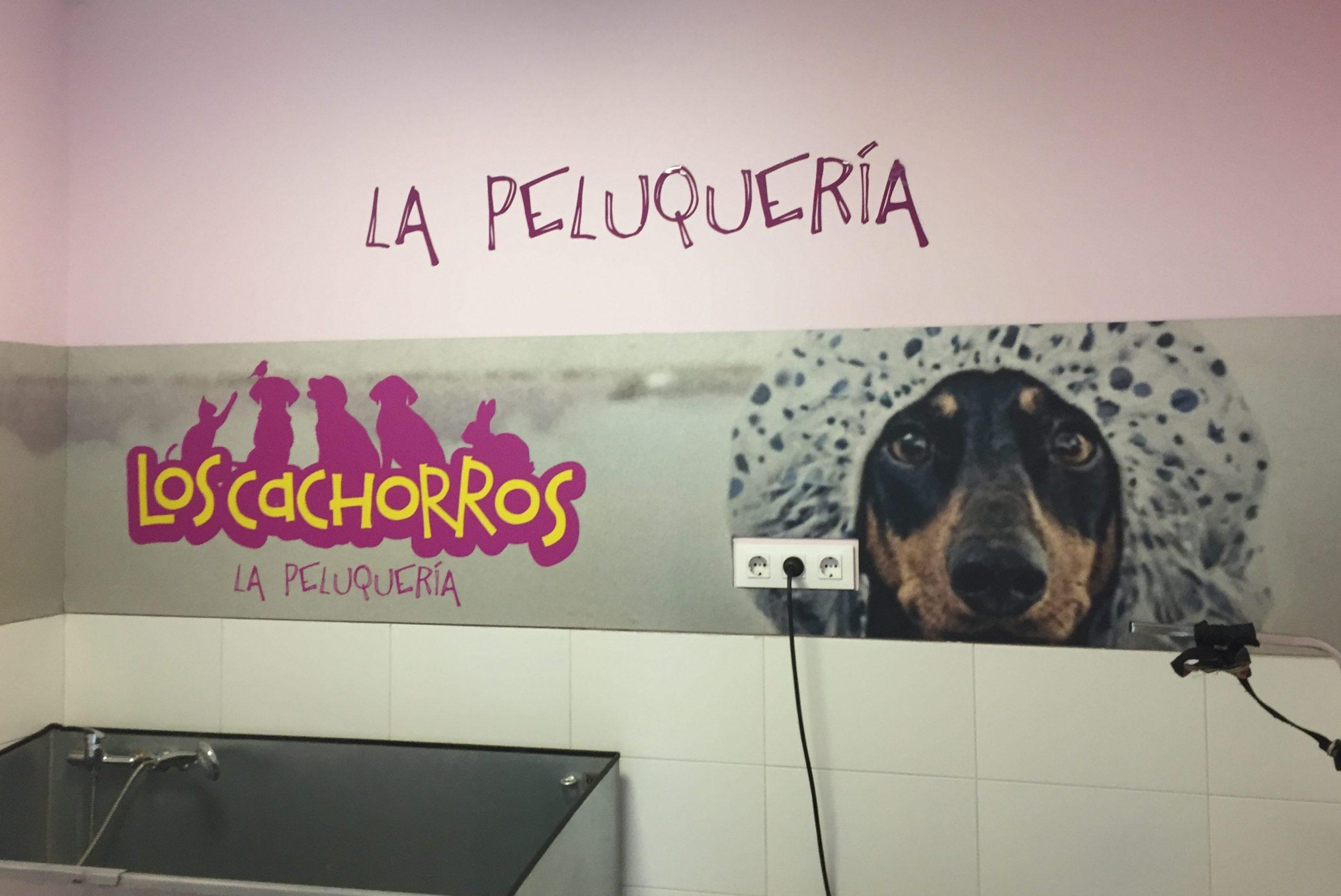 Peluquería Clínica Veterinaria Los Cachorros Polígono de las Mercedes