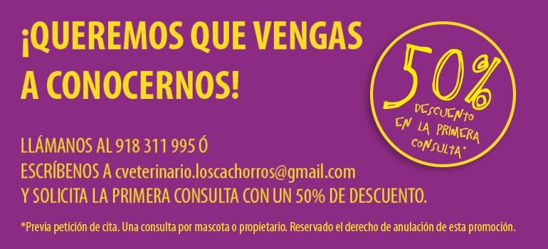 Cupón descuento primera consulta Clínica Veterinaria Los Cachorros
