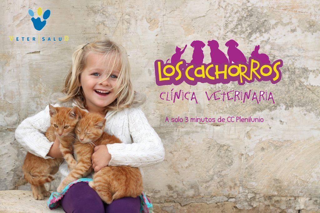 Clinica Veterinaria Los Cachorros